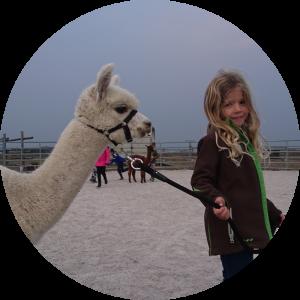 Alpaka - Kindergeburtstag