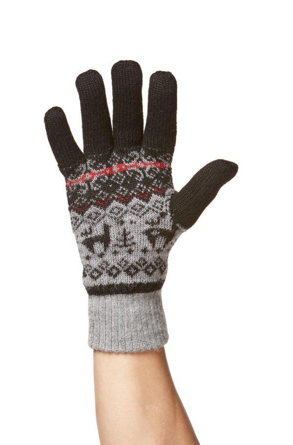 Handschuh Anden Vientos
